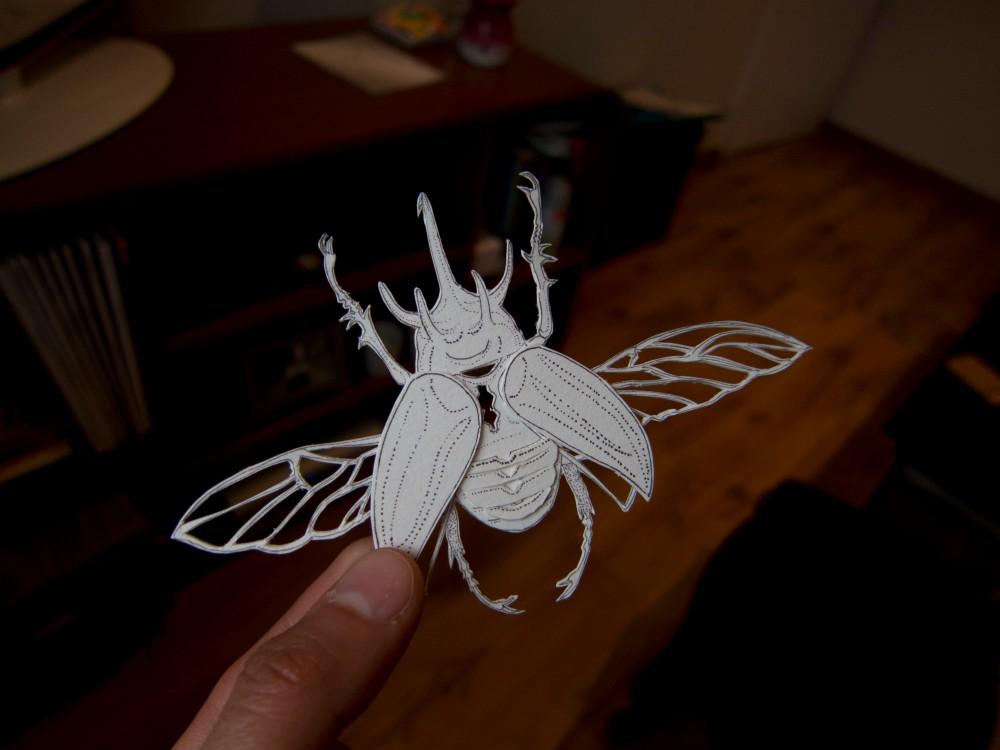 9b Beetle Small