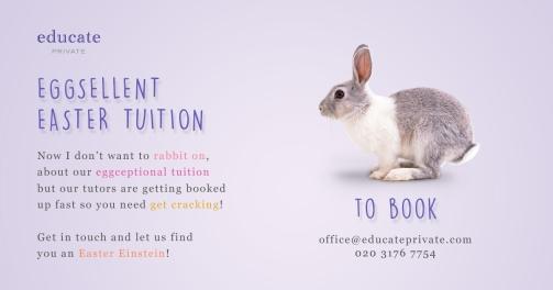 Educate Eggs Facebook - Opt3 - 1200x630