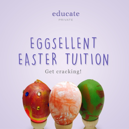 Educate Eggs Instagram - 1200x1200